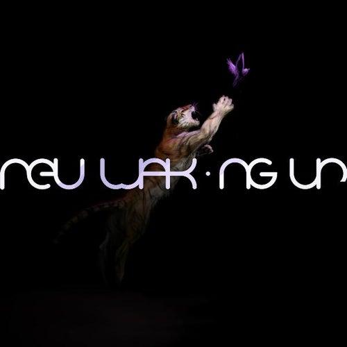 Waking Up by Neu!
