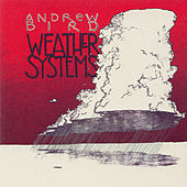 Weather Systems by Andrew Bird