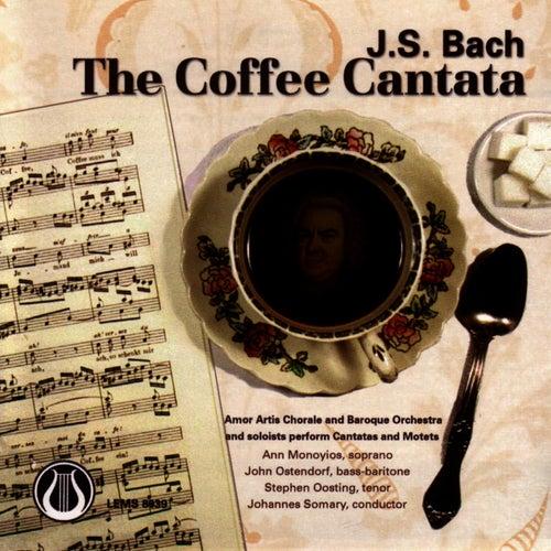 The Coffee Cantata, Cantatas 158 & 211 And Motets by Johann Sebastian Bach