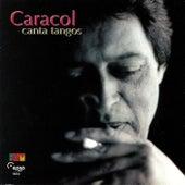 Canta Tangos by Caracol