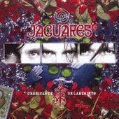 Cronicas De Un Laberinto de Jaguares