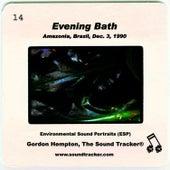 Evening Bath by Gordon Hempton