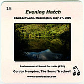 Evening Hatch by Gordon Hempton
