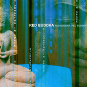 Siddhartha In Space by Red Buddha