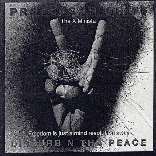 Disturb N Tha Peace by Professor Griff