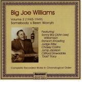 Big Joe Williams Vol. 2 1945 - 1949 de Big Joe Williams