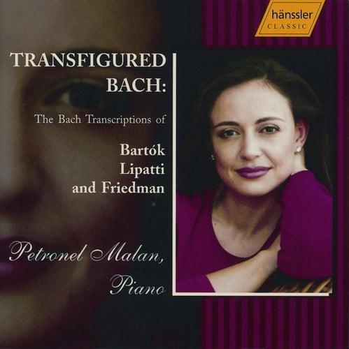 Bach Transfigured - Transcriptions Of Bartok, Lipatti, Friedman by Johann Sebastian Bach