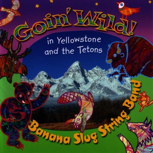 Goin' Wild! by Banana Slug String Band