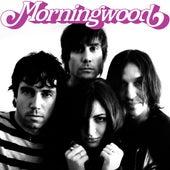 Jetsetter by Morningwood
