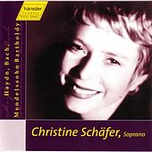 Christine Schafer by Christine Schafer