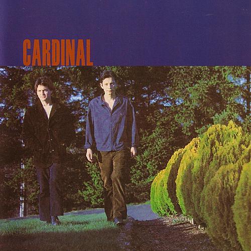 Cardinal by Cardinal