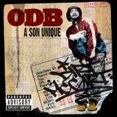 A Son Unique by Ol' Dirty Bastard