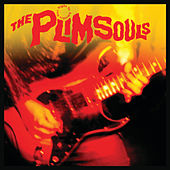 One Night In America by The Plimsouls