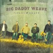 Fields Of Grace by Big Daddy Weave