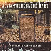 Motivational Speaker by Alvin Youngblood Hart