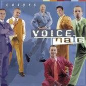 Colors de Voice Male