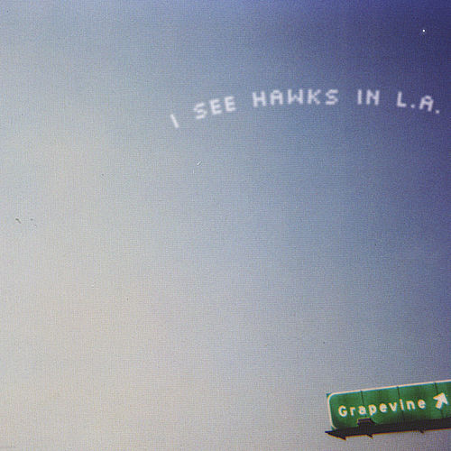 Grapevine by I See Hawks In L.A.