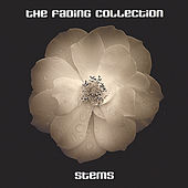 Stems by The Fading Collection