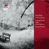 Schubert: Impromptus, D. 899 (Op. 90) & D. 935 (Op. 142); Schubert-Liszt: Song Transcriptions [Classic Library] von Murray Perahia