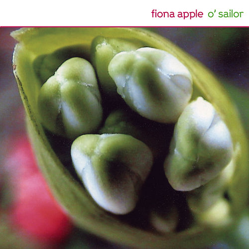 O' Sailor by Fiona Apple