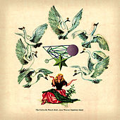 The Fallen By Watchbird by Jane Weaver