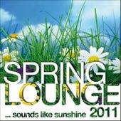 Spring Lounge 2011 (sounds Like Sunshine) von Various Artists