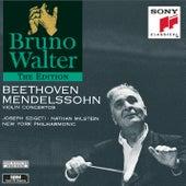 Beethoven & Mendelssohn:  Violin Concertos de New York Philharmonic