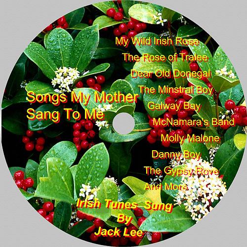 Irish Tunes by Jack Lee