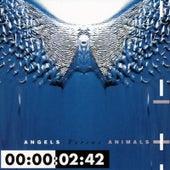 Angels Versus Animal de Front 242