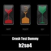 Crash Test Dummy de H2SO4