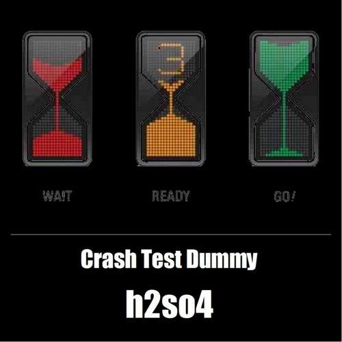 Crash Test Dummy by H2SO4
