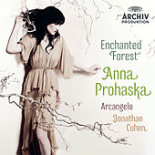 Enchanted Forest von Anna Prohaska