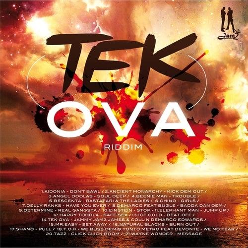 Tek Ova Riddim by Various Artists