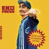 Ich bin jung und brauche das Geld von Eko Fresh