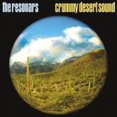 Crummy Desert Sound by Resonars