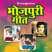 Evergreen Bhojpuri Hits by Various Artists