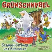 Schmetterlinge und Rabauken - Rockige Bis Zauberhafte Kindermusik Für Die Ganze Familie von Grünschnabel