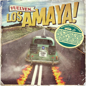 Vuelven Los Amaya de Various Artists