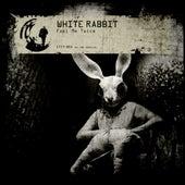 Fool Me Twice by White Rabbit