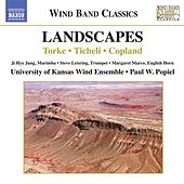 Landscapes von Various Artists