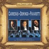 Carreras, Domingo, Pavarotti von Domingo