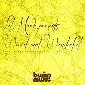 Lil Mark Presents Wired & Wonderful 5 Years of Bump Music - EP di Various Artists