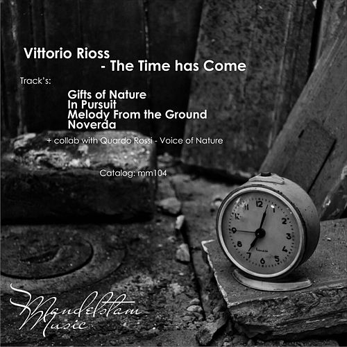 The Time Has Come - Single by Vittorio Rioss