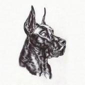 Alpha Dog fra Great Dane
