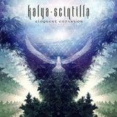 Eloquent Expansion by Kalya Scintilla