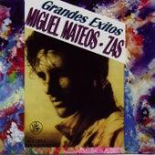 Grandes Exitos by Miguel Mateos