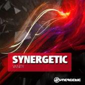 Synergetic Vanity by Various Artists