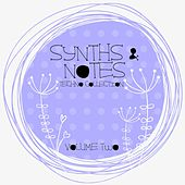 Synths And Notes, Vol. 2 by Various Artists