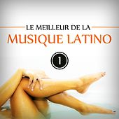Le meilleur de la musique latino, Vol. 1 (Best of Latin Music 20 Hits) von Various Artists