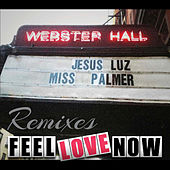 Feel Love Now (Remixes) von Jesus Luz